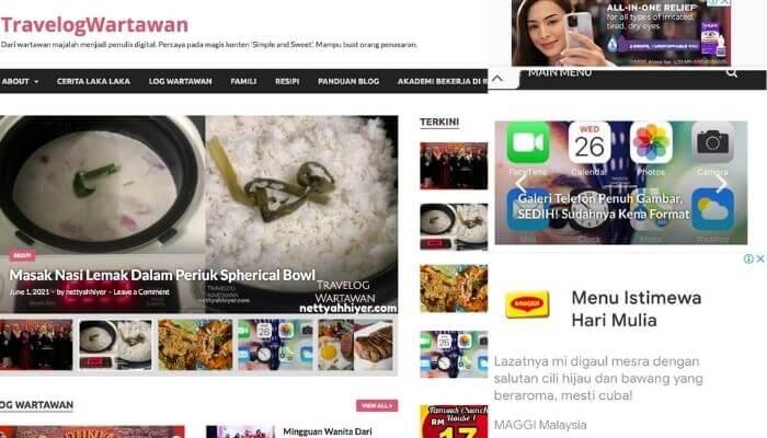 Lulus Google Adsense, Lepas 4 Bulan Ada Website